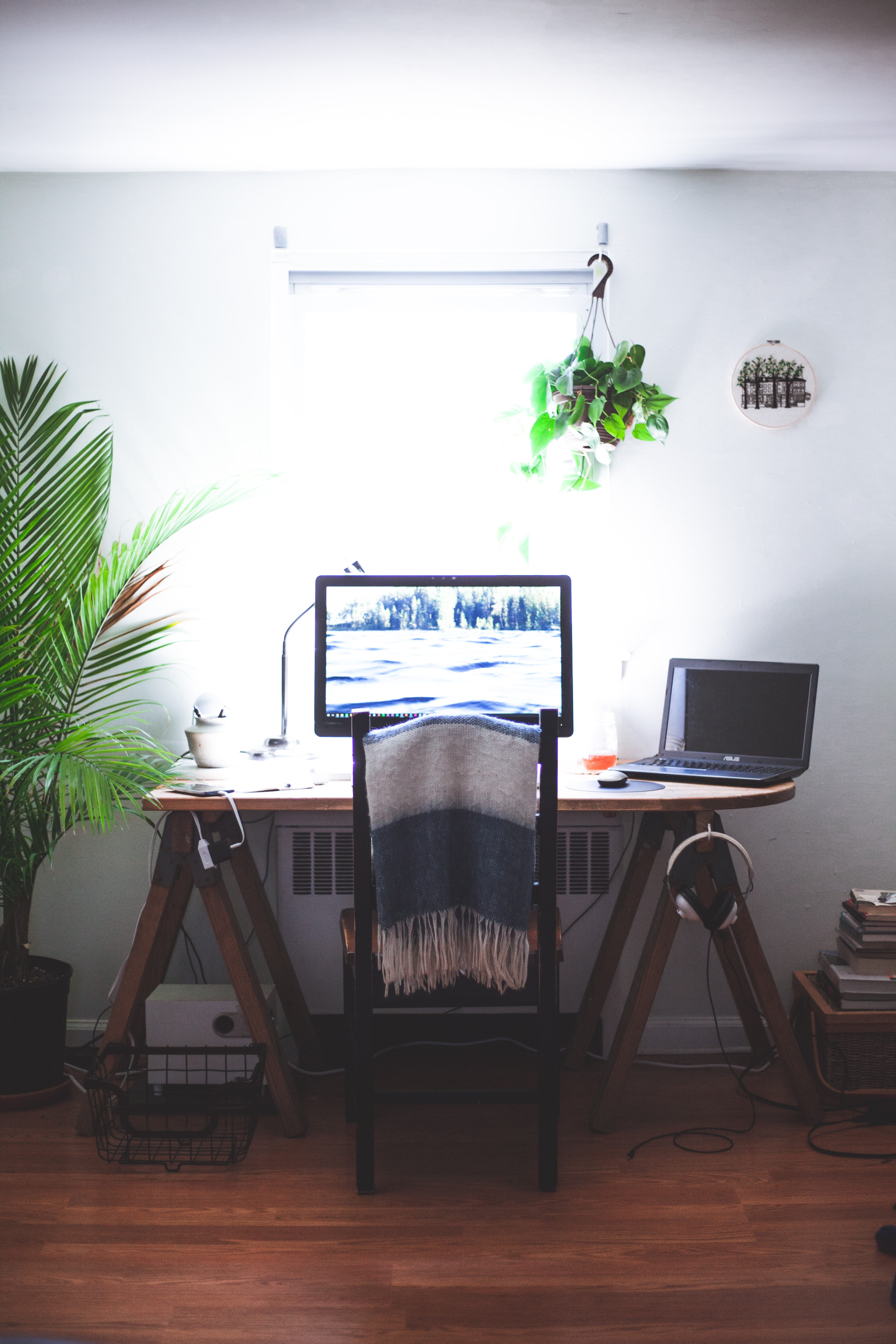 ipsos lucrează de acasă