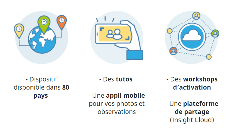 Tutos / Appli mobile / Workshops / Insight Cloud