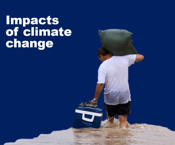 impacts of climate change | Ipsos