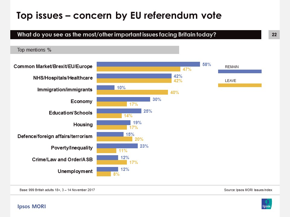 Top issues by EU referendum vote