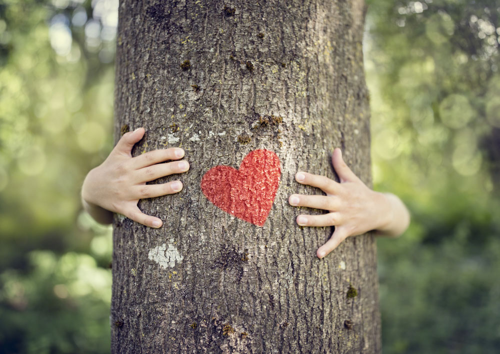 boy hugging tree with heart on it