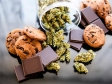 Marijuana Munching Mania Looms
