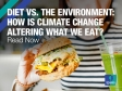 Diet vs. the environment: How is climate change altering what we eat?