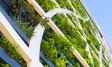 Sustainability | Green building | Ipsos